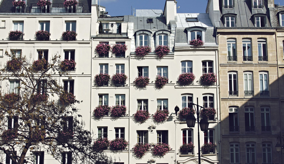 Lost in Cheeseland, Paris, France, Window or Aisle, Travel