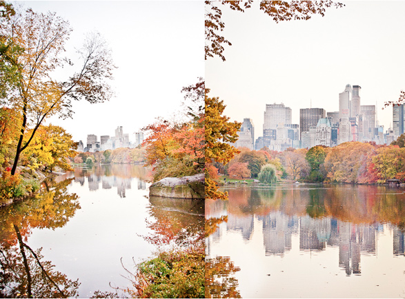 Fall, Central Park, Foliage, New York