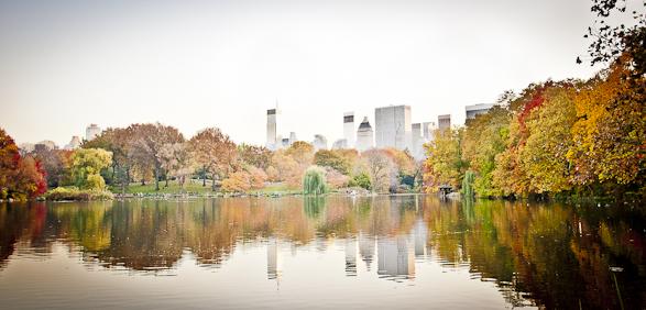 Fall, Central Park, Foliage, New York