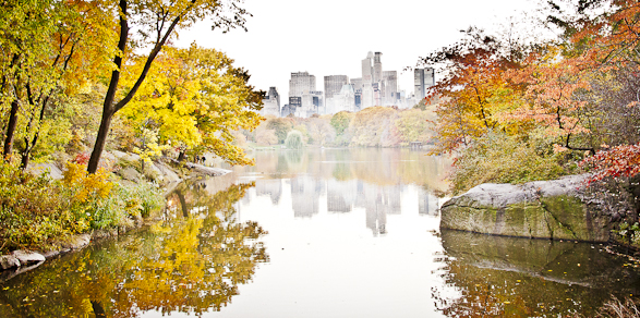 Fall in NY, Central Park, New York