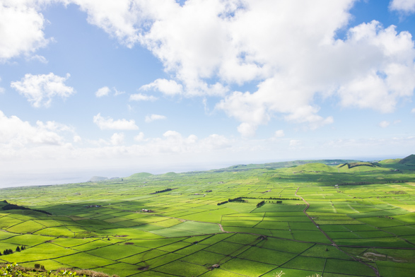 Fifty Shades of Green, Terceira Island
