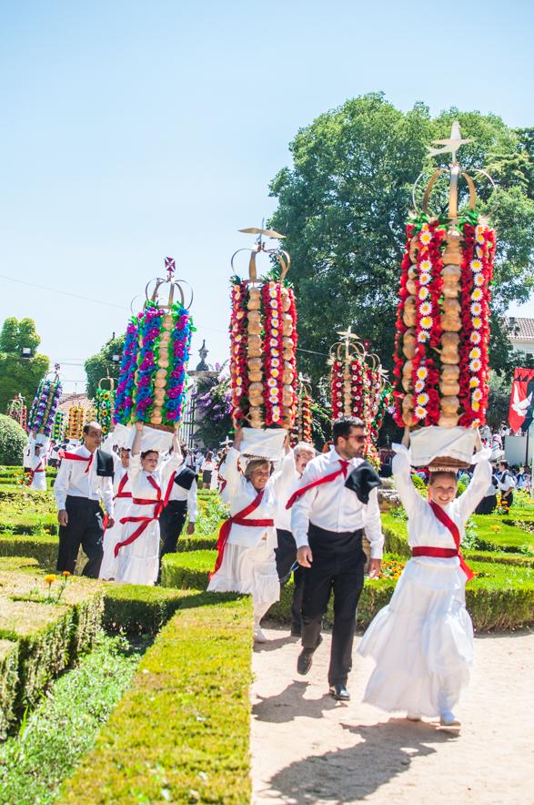 Sivan Askayo -Flower Festival-15