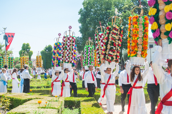 Sivan Askayo -Flower Festival-23